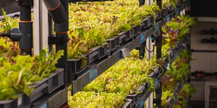 Agricool poursuit son développement