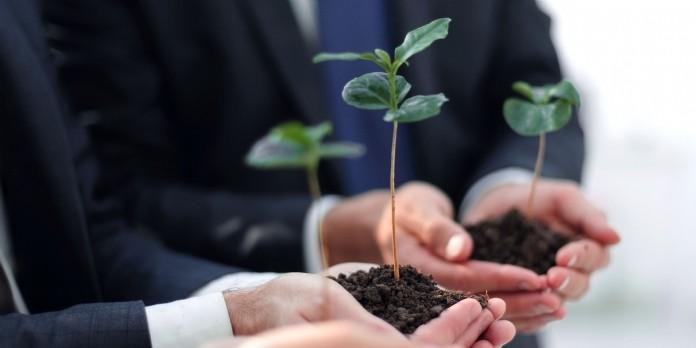 [Tribune] Eco-responsabilité : votre entreprise agit-elle pour protéger l'environnement ?