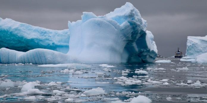 Pamela Anderson s'engage pour la protection des eaux de l'Antarctique
