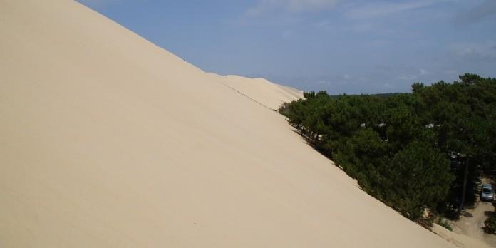 C Ma Terre lance un appel aux dons pour protéger le littoral du Bassin d'Arcachon