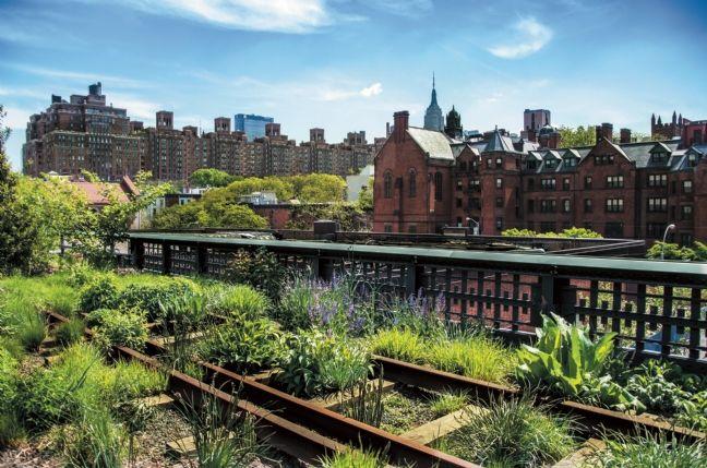Tats unis la campagne pousse en ville for Jardin urbain green bar