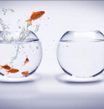 Achat média : 3 annonceurs qui ont choisi d'internaliser