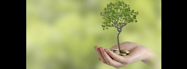 Créer le service achats d'une PME