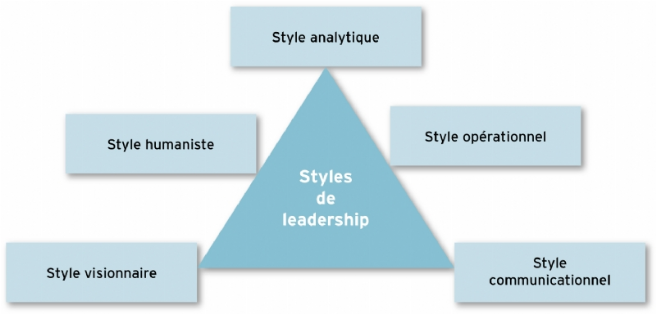 Source : d'après Frédéric Leroy, Bernard Garrette, Pierre Dussauge, Rodolphe Durand, Laurence Lehmann-Ortega,, dir., Strategor, Dunod, 6e édition, 2013.