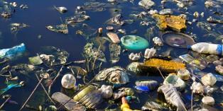 Comment assurer les dommages environnementaux