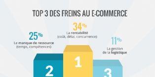 La rentabilit�, principal frein au lancement d'une activit� e-commerce