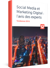 Couverture Les tendances 2018 Social Media et Marketing digital par 20 experts