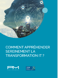 Couverture COMMENT APPRÉHENDER SEREINEMENT LA TRANSFORMATION IT ?