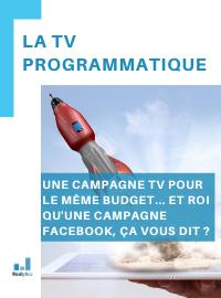 Couverture livre blanc La TV programmatique pour mener sa première campagne TV avec un budget limité