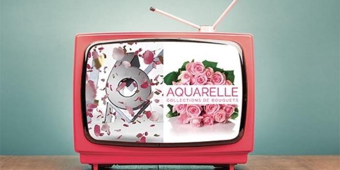 La télévision nous installe dans le monde réel - Épisode 1 : Publicité, publicité, dis-moi comment émerger ?
