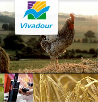 Gestion des Achats dans l'agro-industrie: quels enjeux? Quelles solutions?