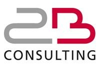 2B CONSULTING